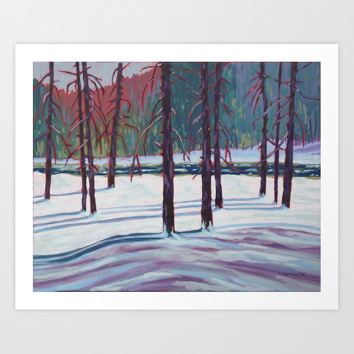 The Spruce Bog, Algonquin Park Art Print
