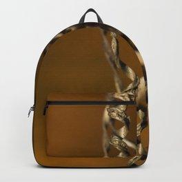 Pumpkin Vine Backpack