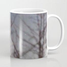 iii. NATURE SHOT Coffee Mug