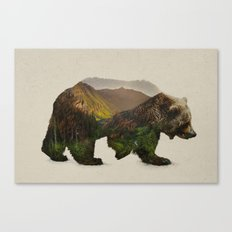 North American Brown Bear Canvas Print