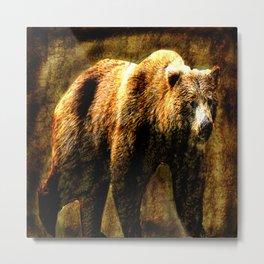 Bear Metal Print