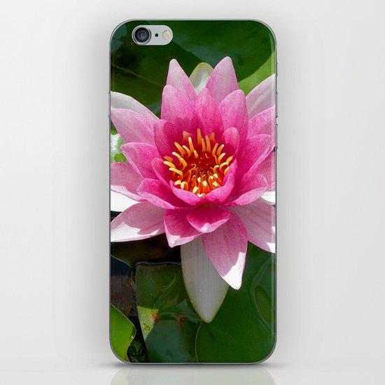 water lily VI iPhone & iPod Skin