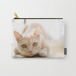 The pouncing kitty Carry-All Pouch