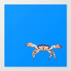Lonely Crab - Blue Canvas Print