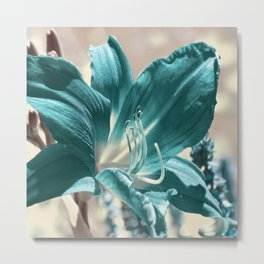Lily flower 025 Metal Print