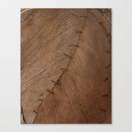 Bark Texture, Palm Bark, Primitive Canvas Print