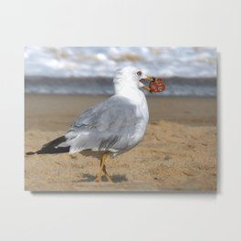 Finders Keepers Metal Print
