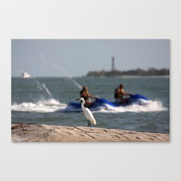 Summertime Fun  Canvas Print