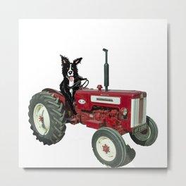 Sheepdoggy driverr Metal Print