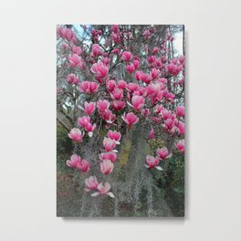 Beauty In Pink And Gray Metal Print