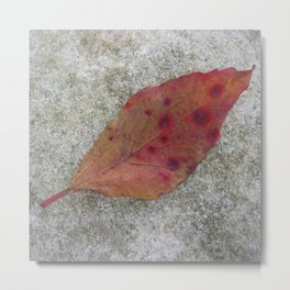 Polka Dots Leaf on Stone Metal Print