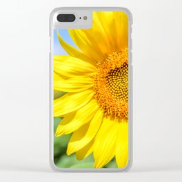 Yellow Sunflower, Blue Sky Clear iPhone Case