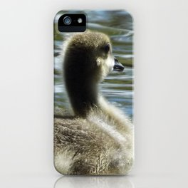 Gosling on the water iPhone Case