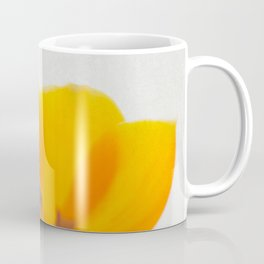 Radiance IV Coffee Mug