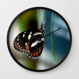 Doris Longwing Butterfly-2 Wall Clock