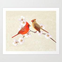 Northern Cardinal Bird Couple Art Print