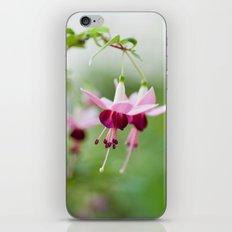 Fuchsia  8686 iPhone & iPod Skin