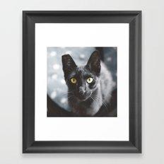 Seb Framed Art Print