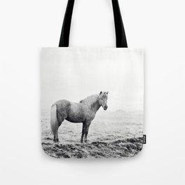 Horse in Icelandic Landscape Photograph Tote Bag