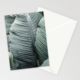 Banana Leaves Tropical Art Stationery Cards