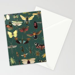 Lovely Butterfly Green Stationery Cards