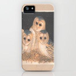 Barn Owls iPhone Case