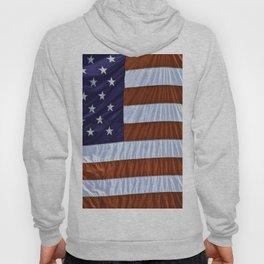 United States Of America Flag Hoody