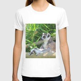 Cute and relaxed Ring-tailed lemur (lemur catta) T-shirt