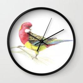 Eastern Rosella Wall Clock