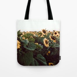 Sunflower field III Tote Bag