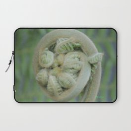 Furled Fern Soon to Unfurl Laptop Sleeve