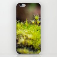 moss iPhone & iPod Skins featuring Moss. by Michelle McConnell