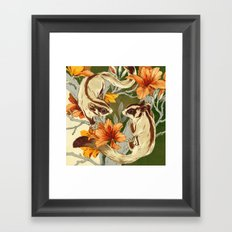 Sugar Gliders Framed Art Print