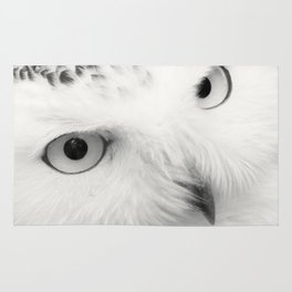 owl chouette bird white Rug