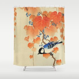 Ohara Koson - Great tit on paulownia branch Shower Curtain