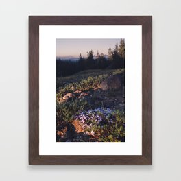 Wildflowers at Dawn - Nature Photography Framed Art Print