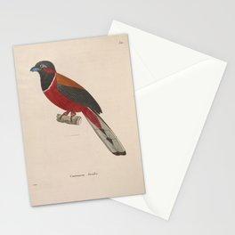 Malabar Trogon5 Stationery Cards