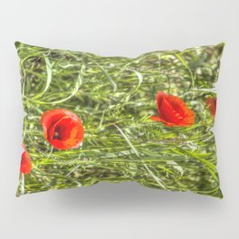 Summer Poppys Pillow Sham
