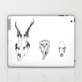 sc Laptop & iPad Skin
