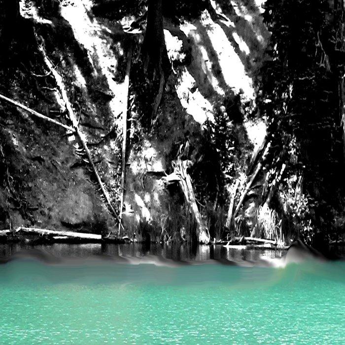 Green Water, Black and White Leggings
