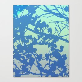 cherry blossom calm Canvas Print