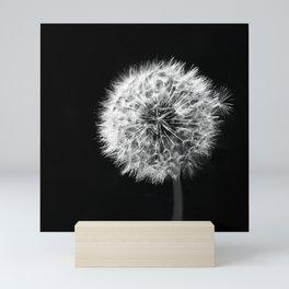 Black and White Dandelion Mini Art Print