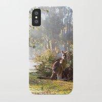 kangaroo iPhone & iPod Cases featuring Kangaroo by Nove Studio