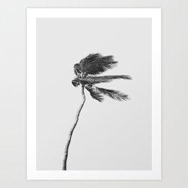 Grey Palm Tree Art Print