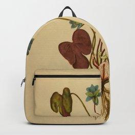 Anemone hepatica Backpack