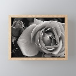 Rose Framed Mini Art Print