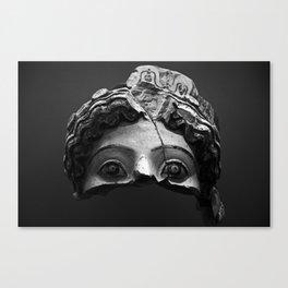 # 254 Canvas Print