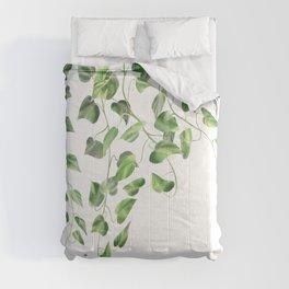 Golden Pothos - Ivy Comforters