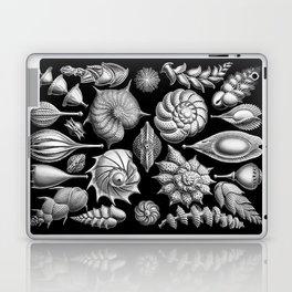 Sea Shells (Thalamophora) by Ernst Haeckel Laptop & iPad Skin