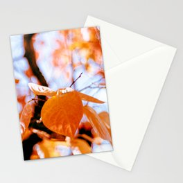 Autumn red foliage Stationery Cards